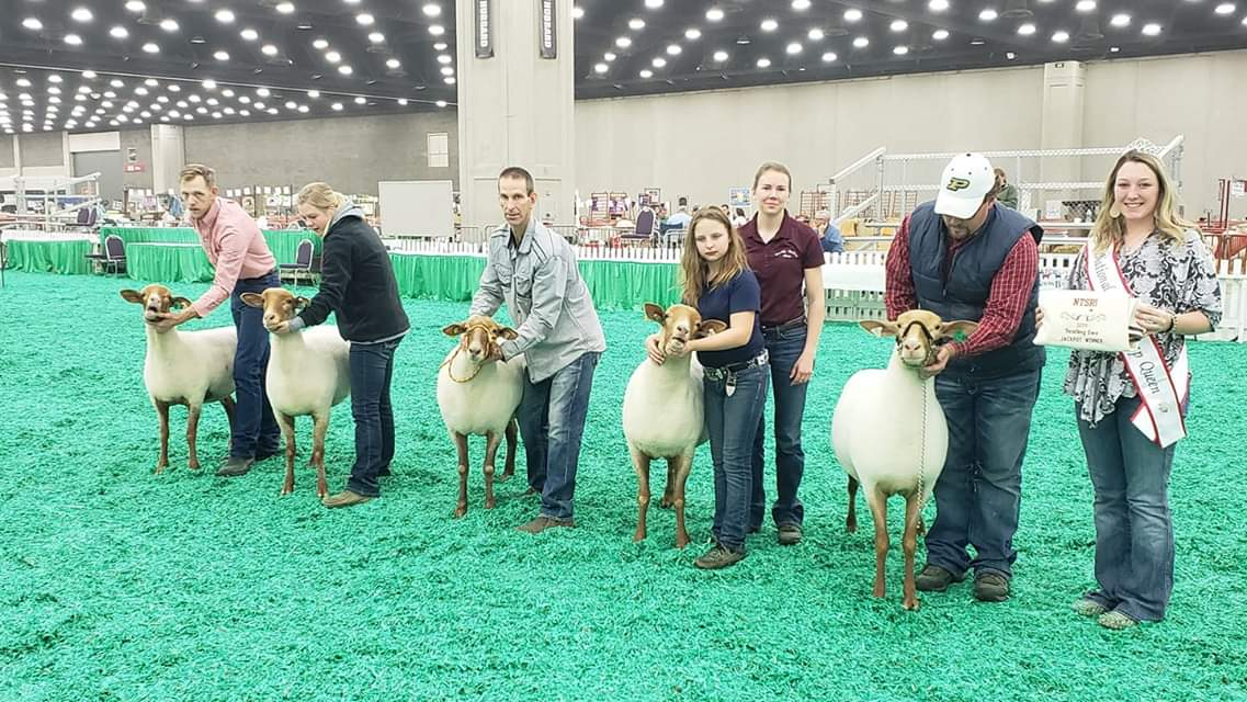 NATIONAL TUNIS SHEEP REGISTRY, INC